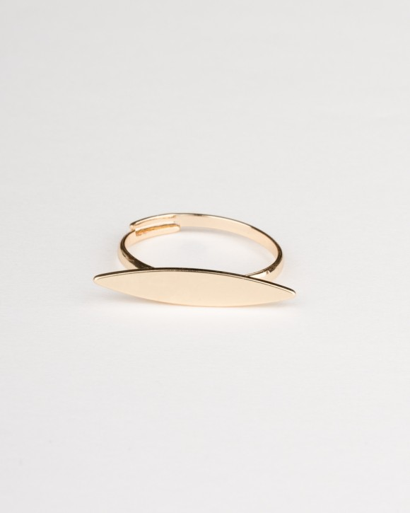 Surfboard Ring